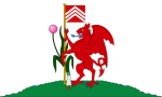 City of Cardiff Flag