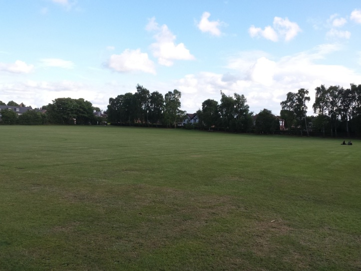 Gladstone Playing Fields