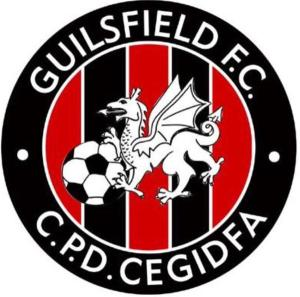 Guilsfield Badge