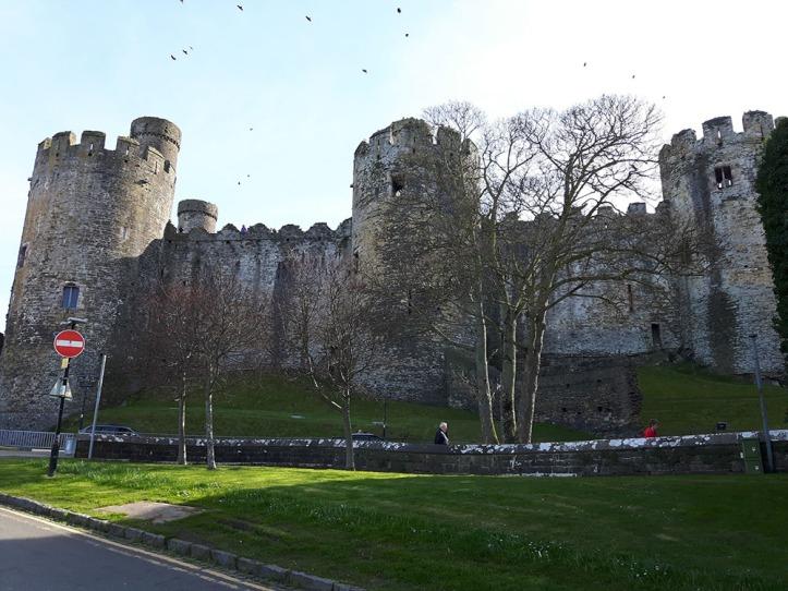 Conwy Castle 8