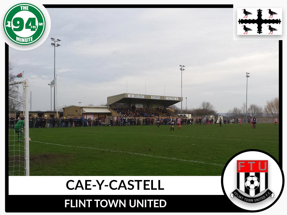 Cae-y-Castell - Flintshire