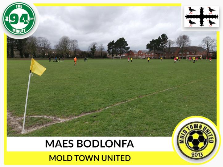 Maes Bodlonfa - Flintshire