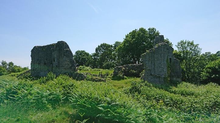 Caegwrle Castle - Blog Pic