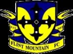 Flint Mountain